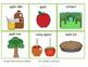 Apple Vocabulary Pack