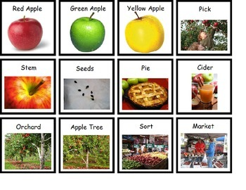 Apple Vocabulary Pictures