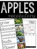 Apple Vocabulary Resources