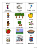 Apple WH Picture Sort for Special education and Autism