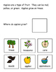 Apple Who, Where, and What Adapted Book for Special Education