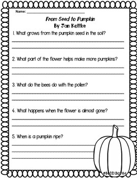 Pumpkin Books Comprehension Questions