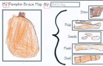 Apple and Pumpkin Brace Maps