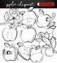 Apple clipart Bundle +black white