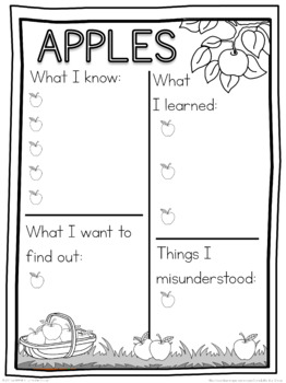 Apple  schema  worksheet