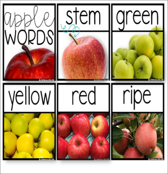 Apple-tastic Vocabulary {Themed Vocabulary Cards}