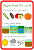 Apple tree life cycle circle time questions