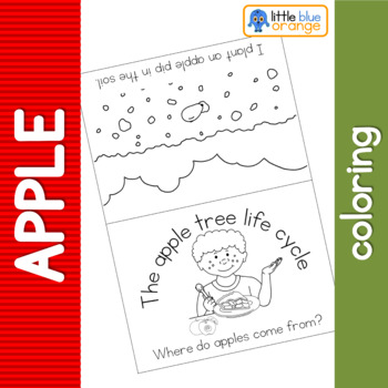 Apple tree life cycle coloring booklet