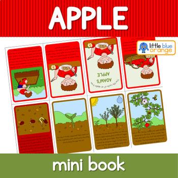Apple tree life cycle mini book