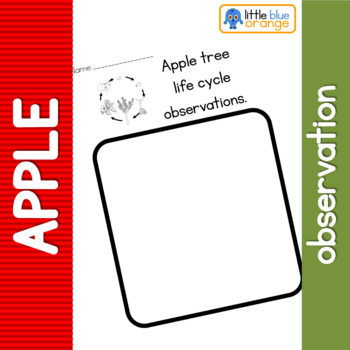 Apple tree life cycle observation sheet