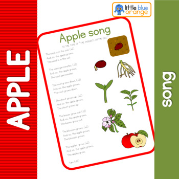 Apple tree life cycle song