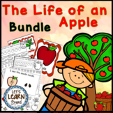 Apple Life Cycle Math and Literacy Bundle, Apple Activities, Fall Activities