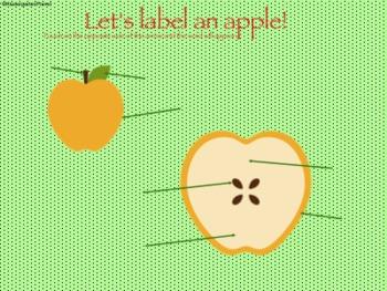 Apples, Apples, Apples