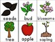 Apples, Apples , Everywhere Activity Unity