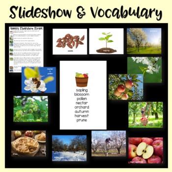 Apples Nonfiction Close Reading & Visual Vocabulary Unit