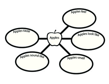 Apples Descriptive Word Web (Five Senses)