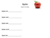 Apples - Five Senses