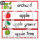 Apples - Illustrated Word Wall (21)