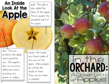 Apples: Informational Text, Passages, and Activities