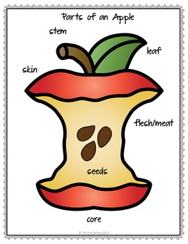 Apples Unit ~PK-1st~ Science, Literacy and Math