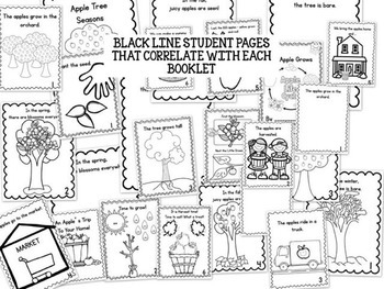 APPLES Easy Reader Science/Social Studies Let's Make a Book