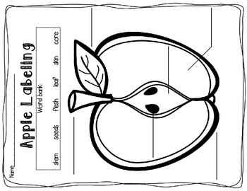 Apples Math, Literacy, and Art Activities
