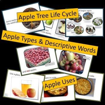 Apples Multimedia Bundle - PowerPoint Presentations, Activities and Printables