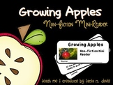 How Apples Grow| Informational Text Easy Reader