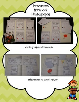 Apples Nonfiction Text with Interactive Notebook R.I.1 Answering Questions