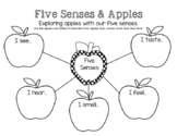 Apples & Our Five Senses