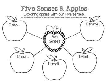 Apples & Our Five Senses