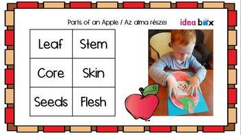 Apples STEAM activities