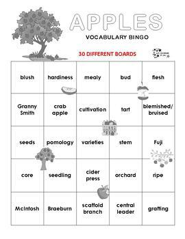 Apples Vocabulary Bingo