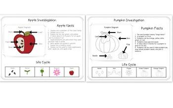 Apples/Pumpkins Investigations and Mini Books