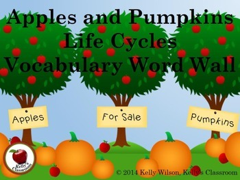 Life Cycles Apples and Pumpkins