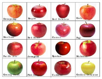 Apples varieties: Mini Matching Cards