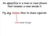 Appositive Mini Lesson Slides