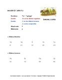 Aprendamos Español /Let's Learn Spanish -Student Fluency B