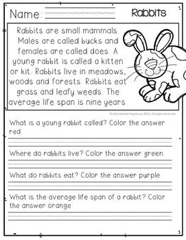 April Comprehension Passages