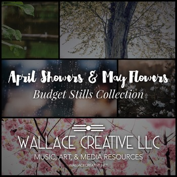 April Showers & May Flowers Stills Collection
