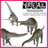 Aptasaurus (brontosaurus) - 4 Realistic Dinosaur Clip Art Images