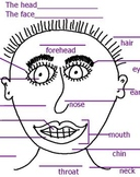 Apuntes del Cuerpo- Vocabulario