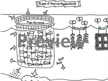 Aquaculture Problems