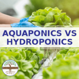 Aquaponics vs Hydroponics guide - Reading Guide