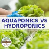 Aquaponics vs Hydroponics Infographic  distance learning