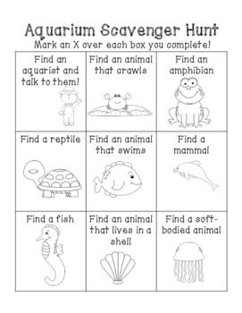 Aquarium Activities
