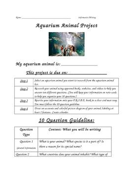 Aquarium Animal Research Project (Student)