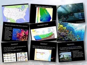 Aquarium Art Project: Habitats, Ocean/River, Geography, Water Cycle, Environment