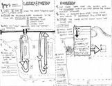 Aquatic Ecosystems Coloring Sheet