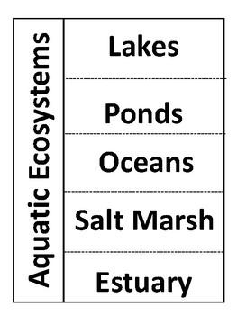 Aquatic Ecosystems Foldable